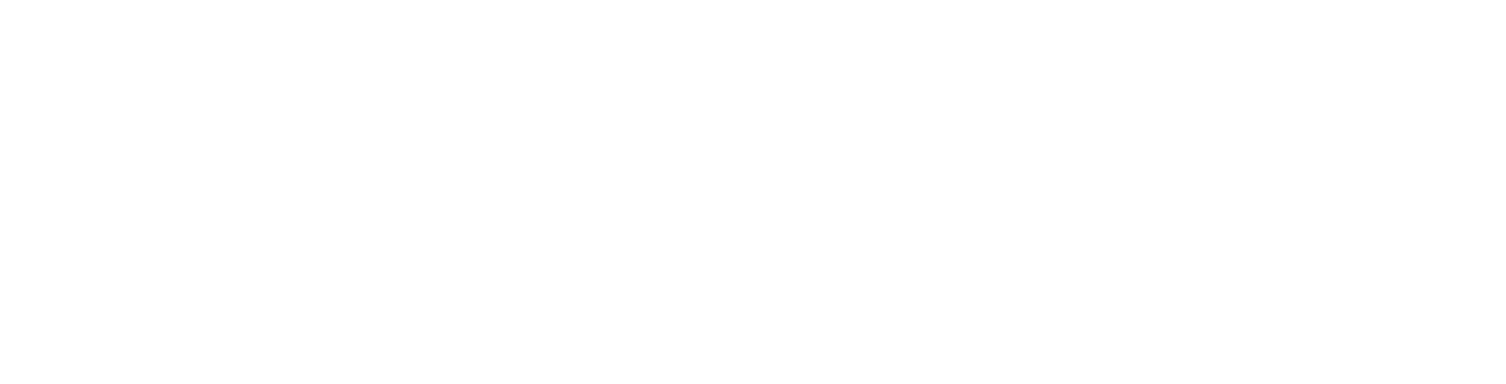 Home footer logo