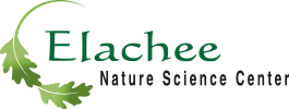 Elachee Nature Science Center