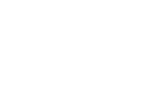 Wellspring-ICON-100.png